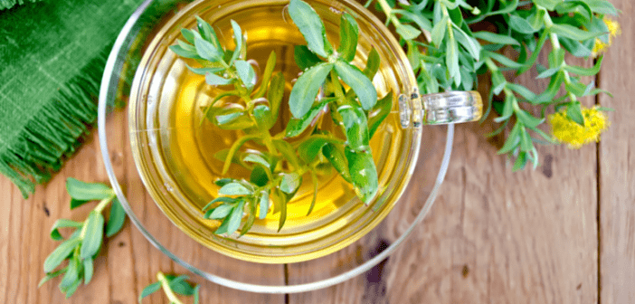5 life-changing herbs that you should know about