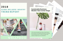 Get Access To The Top Global Wellness Industry Trends 2018